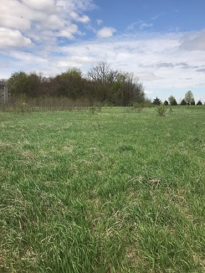 Wilmington Residential Lots & Land For Sale: 31034 Indian Trail Road