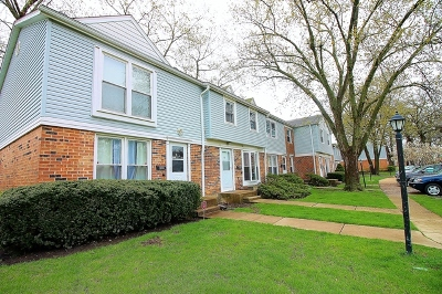 Streamwood Condo/Townhouse For Sale: 4052 Club Tree Drive
