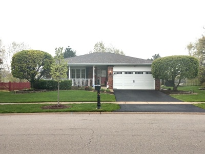 Lockport Single Family Home For Sale: 16744 West Apache Drive