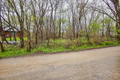 Ogle County Residential Lots & Land For Sale: 000 Terrace View Boulevard