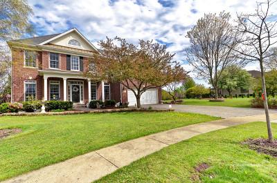 Shorewood Single Family Home For Sale: 812 Diamond Head Drive East