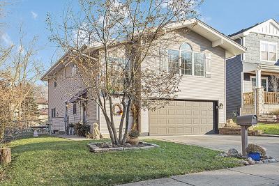 Lemont Single Family Home For Sale: 733 Czacki Street