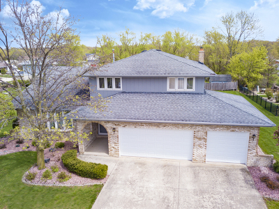 Homer Glen Single Family Home For Sale: 15639 Twin Lakes Drive