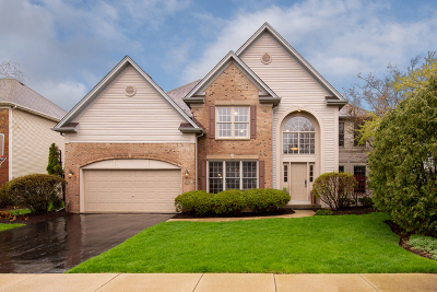 South Elgin Single Family Home For Sale: 840 Legacy Drive