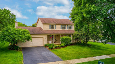 Naperville Single Family Home For Sale: 924 Hyde Park Lane