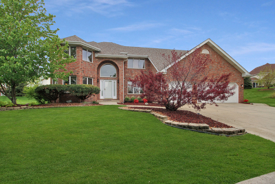 Tinley Park Single Family Home New: 8912 Timbers Pointe Drive