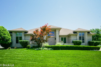 Orland Park Single Family Home For Sale: 17401 Elk Drive