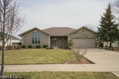Mokena Single Family Home For Sale: 9911 195th Street