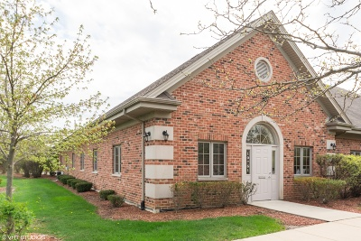 Tinley Park, Orland Park Commercial For Sale: 10761 163rd Place #B1