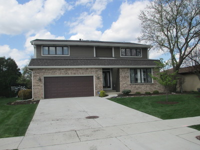Schaumburg Single Family Home For Sale: 594 Sandpebble Drive