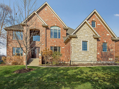 Lemont Single Family Home For Sale: 1321 Cypress Drive