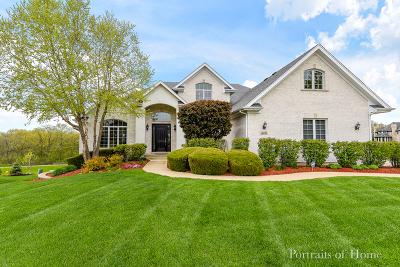 Lemont Single Family Home For Sale: 16751 Wilshire Court