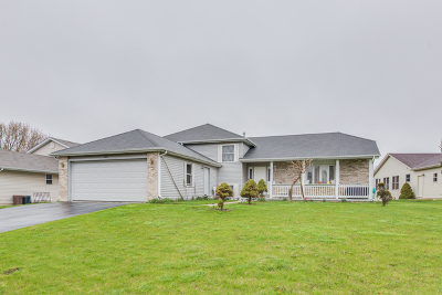 McHenry Single Family Home For Sale: 5210 Glenbrook Trail