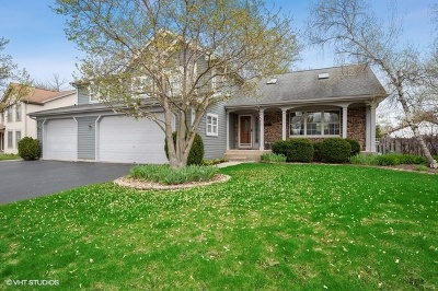 Wauconda Single Family Home For Sale: 320 Old Country Way