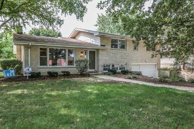 Naperville Single Family Home For Sale: 370 Prairie Avenue