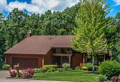 Lisle Single Family Home For Sale: 6030 Mill Bridge Lane