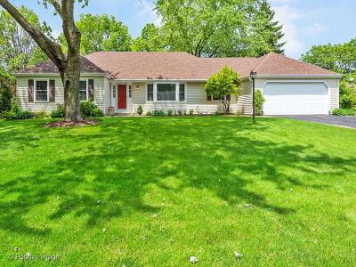 Batavia  Single Family Home For Sale: 1157 Chillem Drive