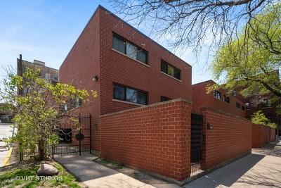 Condo/Townhouse For Sale: 725 West Waveland Avenue #F