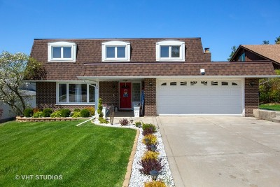 Palos Heights, Palos Hills Single Family Home For Sale: 9136 Stratford Lane