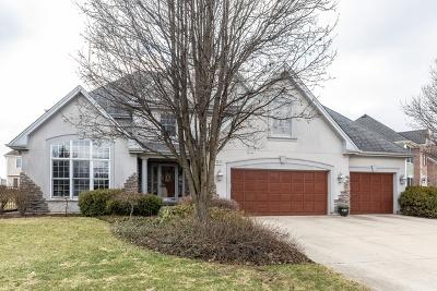 Geneva Single Family Home For Sale: 725 Fox Run Drive
