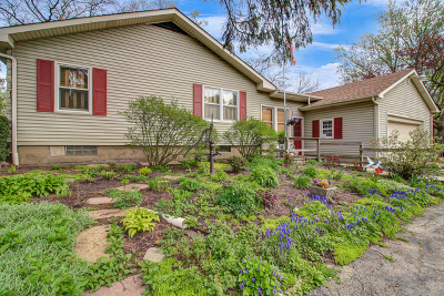 Downers Grove Single Family Home For Sale: 721 63rd Street