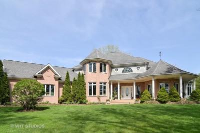 Kane County Single Family Home For Sale: 5n911 Dunham Circle