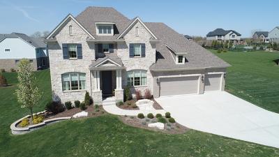 Homer Glen Single Family Home Price Change: 15240 South Ginger Lane