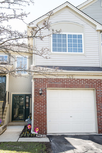South Elgin Condo/Townhouse For Sale: 249 Nicole Drive #C