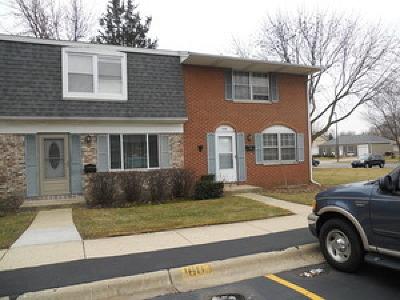 Streamwood Rental For Rent: 1607 McKool Avenue #1607