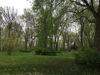 Kankakee Residential Lots & Land For Sale: 3823 Serenity Parkway