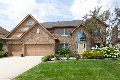 Naperville Single Family Home For Sale: 3223 Tall Grass Drive