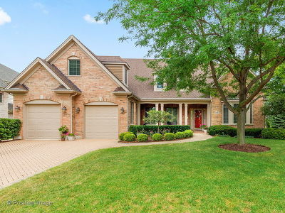 Wheaton Single Family Home For Sale: 1601 East Prairie Avenue