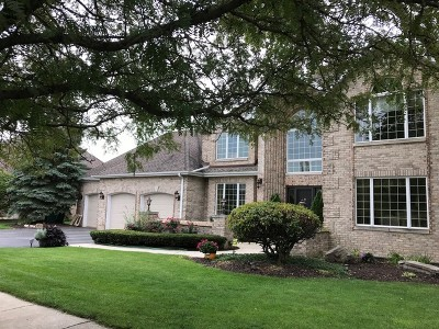 Orland Park Single Family Home For Sale: 11165 Brigitte Terrace