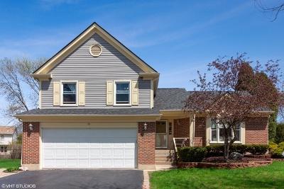Buffalo Grove Single Family Home For Sale: 70 Newfield Drive