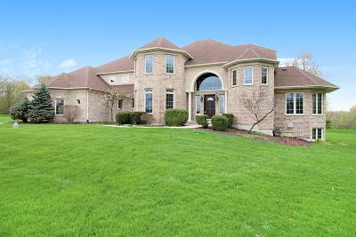 Oswego Single Family Home For Sale: 5500 Half Hollow Court