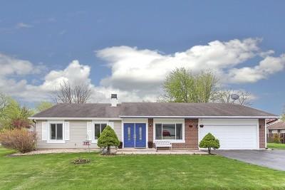 Bartlett Single Family Home For Sale: 405 North Harbor Terrace