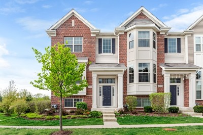 Winfield Condo/Townhouse For Sale: 28w074 Woodland Drive