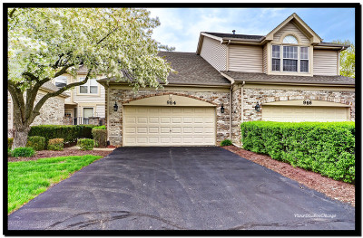 Naperville Condo/Townhouse For Sale: 964 Heathrow Lane