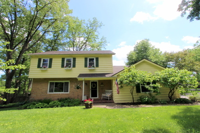 Crystal Lake Single Family Home For Sale: 6723 Meadow Drive
