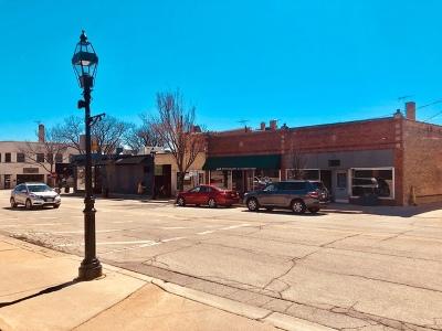 Du Page County Commercial For Sale: 505 Pennsylvania Avenue
