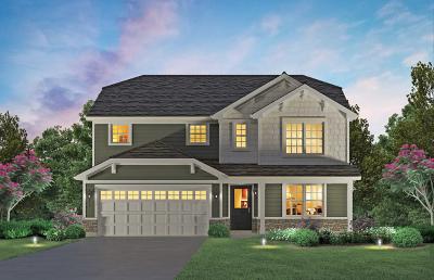 Plainfield Single Family Home For Sale: 25438 West Ryan Lane