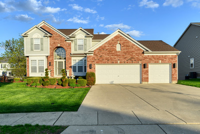 Streamwood Single Family Home For Sale: 105 Cottonwood Drive