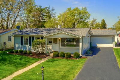 Lemont Single Family Home For Sale: 1030 Kim Place