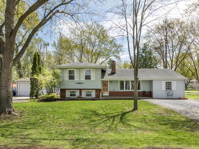 Glen Ellyn Single Family Home For Sale: 22w203 Burr Oak Drive