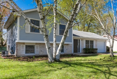Bolingbrook Single Family Home Re-Activated: 244 Gettysburg Drive