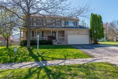 Carpentersville Single Family Home For Sale: 405 Harbor Drive