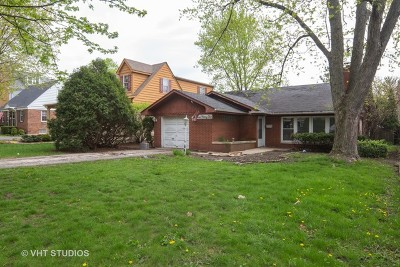 Hinsdale Single Family Home For Sale: 741 South Bruner Street