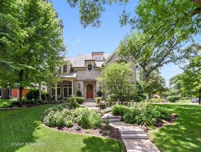 Naperville Single Family Home For Sale: 903 Edgewater Drive