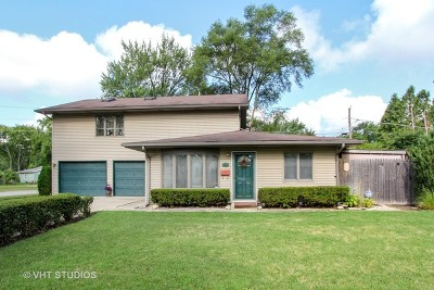 Wauconda Single Family Home For Sale: 355 Larkdale Row