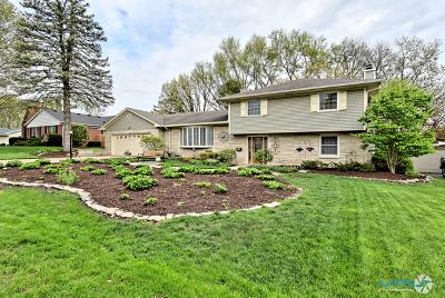 Geneva Single Family Home For Sale: 325 Willow Lane